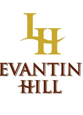Levantine Hill