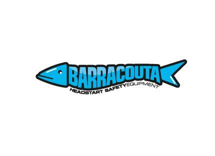 The Creative Parrot Logo Design - Barracutta